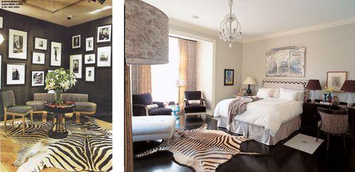 Zebra-comparison2